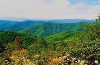 balsam mountain